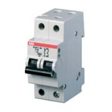 Автоматический выключатель 2-полюсной S202 C2
